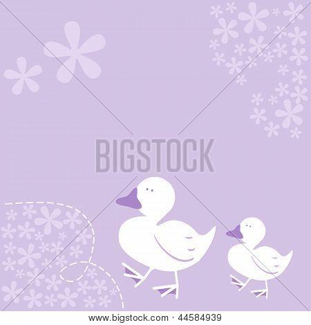 Ducks Illustration