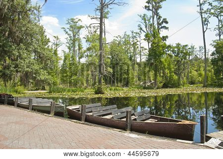 Cypress Swamp Boats
