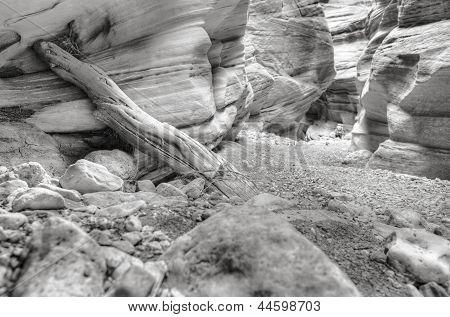 Buckskin Gulch Hiker