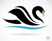 image of black swan  - Vector image of a swan on a black background - JPG