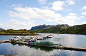 stock photo of carron  - The bay at Plockton - JPG
