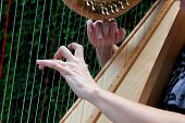 Hands strumming harp strings