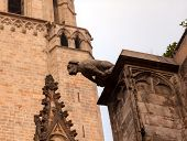 foto of gargoyles  - Stone Gargoyle Dragon Catholic Barcelona Cathedral Catalonia Spain - JPG