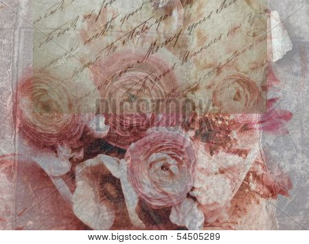 ranunculus flowers grunge