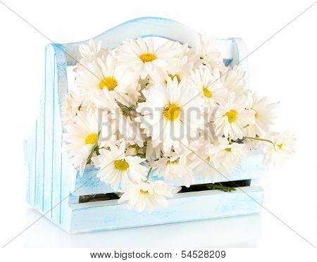 Flowers in wooden box isolated on white
