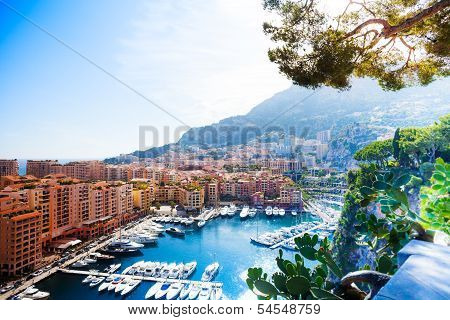 Marina In Monaco City