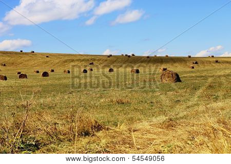 Straw Roll Bale On The Field Of Farmland