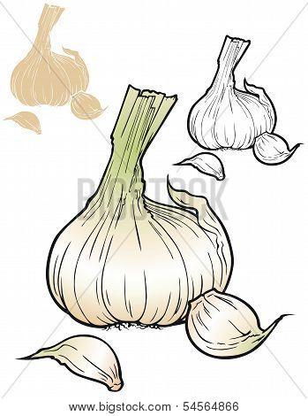 Garlic, tasty