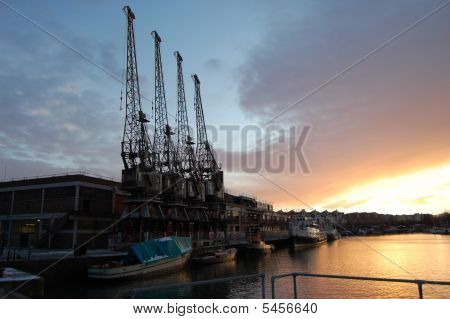 Cranes And Sunset