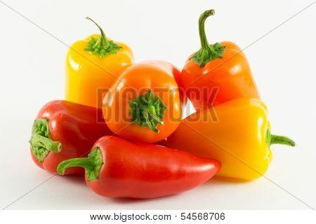 Pepper