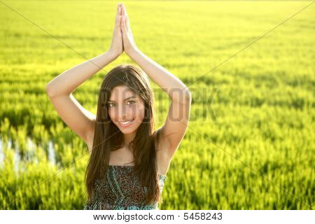 Beautiful Brunette Indian Woman In Green Rice Fields