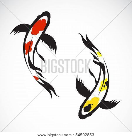 Vector Image Of An Carp Koi