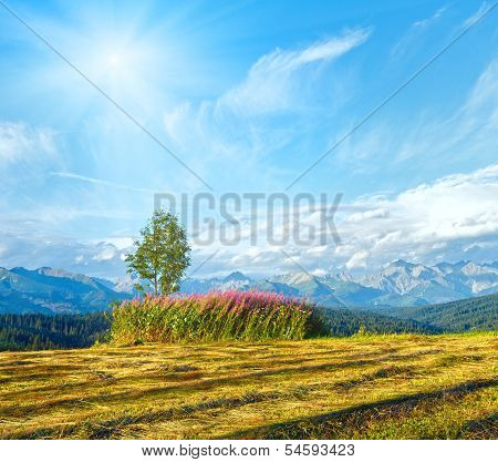 Sunshine Above Summer Mountain Country Mown Field