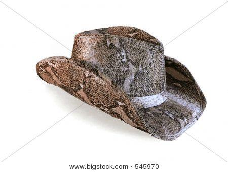 Python Cowboy Hat