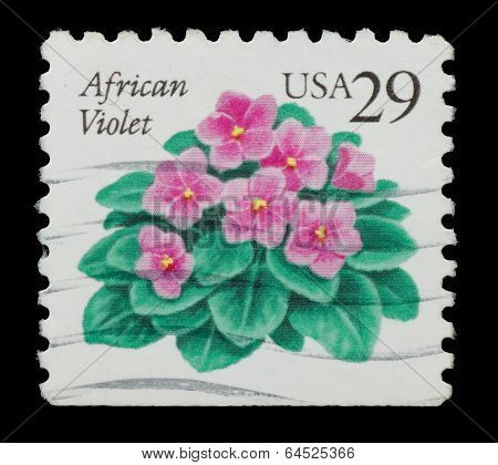 United States Of America - Circa 1993: A Stamp Printed In Usa Shows African Violets, Plant, Circa 19