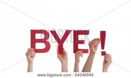 People Holding Bye