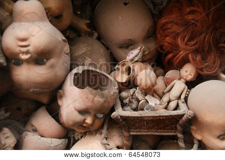 Scary doll's heads (with some white dust spots)