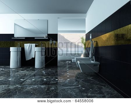 Picture of bathroom interior with wash basin and toilet