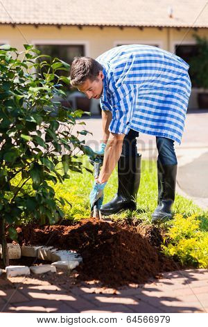 young man digging a hole before planting a shrub in home garden