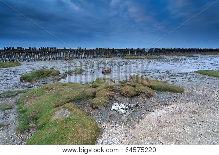 Low Tide On North Sea In Friesland