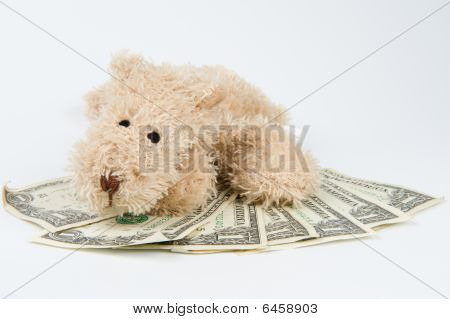 Dog after money