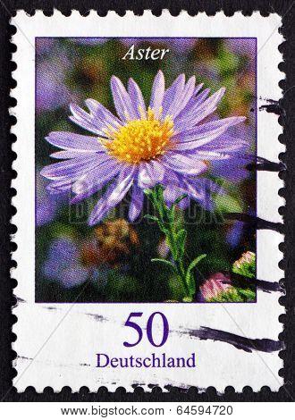 Postage Stamp Germany 2005 Aster, Flowering Plant