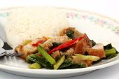 image of crispy rice  - Stir fried kale Crispy pork with steamed rice on the plate - JPG