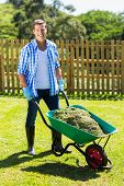 picture of grass-cutter  - young man pushing wheelbarrow full of grass after cleaning backyard - JPG