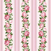 picture of english rose  - Vector vintage seamless stripped pattern with pink roses - JPG