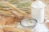 stock photo of flour sifter  - Wheat flour in glass sifter and grains - JPG