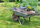 stock photo of wheelbarrow  - gardening tools in a wheelbarrow with potted flowers