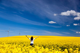 stock photo of rape-field  - Happy young woman with hands raised on spring field of yellow flowers - JPG