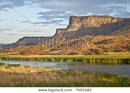 Desert Wetlands