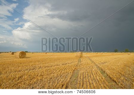 Autumn Fields After Harvest