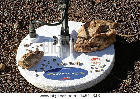 Hard Metal Detector On A Background Of Mineralized Soil