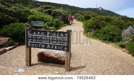 Pathway In The Cape Town Leading To Cape Point Lighthouse