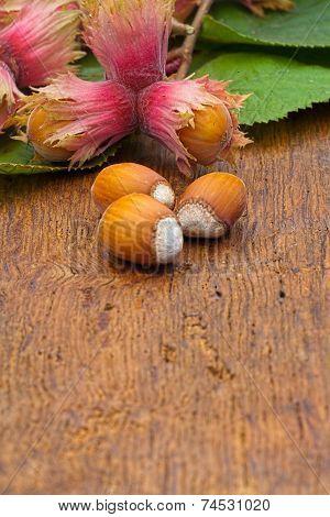 Hazelnuts On Wooden Board
