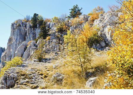 Slope Ai-petri Mountain In Sunny Autumn Day