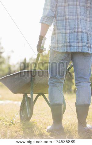 Low section rear view of man pushing wheelbarrow at garden
