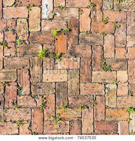 Red Brick Floor Background