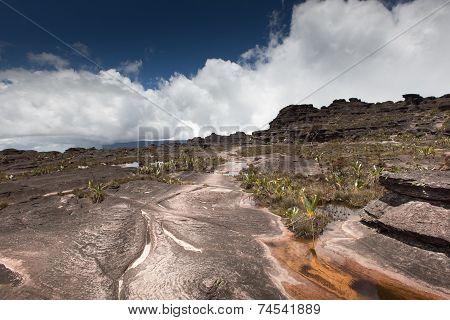 Bizarre Ancient Rocks Of The Plateau Roraima Tepui - Venezuela, Latin America