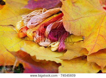 Colors Of Autumn, Multicolor Yarns Looks Like Autumn Leaves