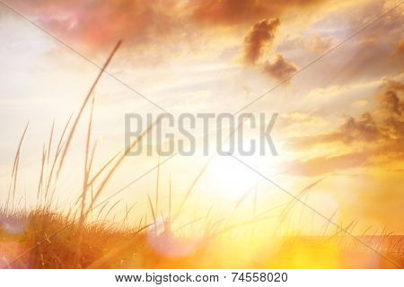 Lighthouse view through Dune grasses at sunset