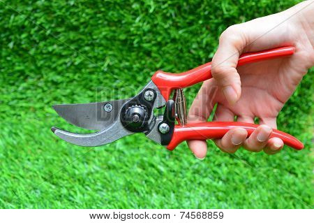 Red Garden Secateurs