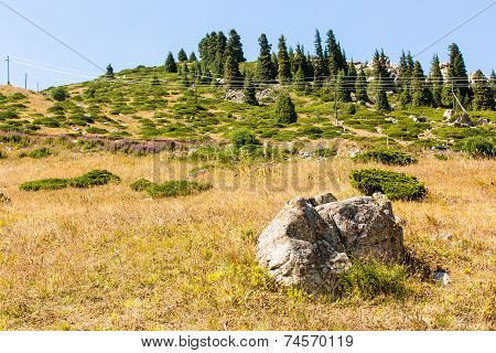 Nature Near Big Almaty Lake, Tien Shan Mountains In Almaty, Kazakhstan,asia At Summer