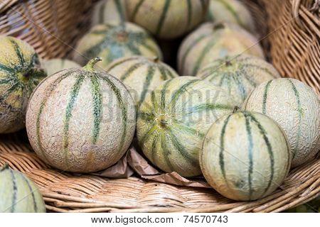 Fresh Cantaloupes Melons on a market stall
