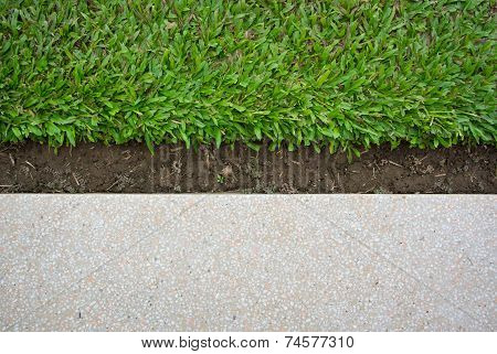 Green grass and terrazzo floor on background