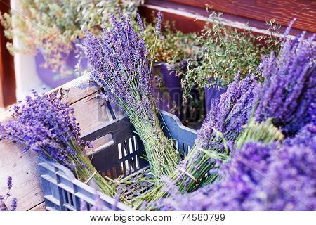 Shop In Provence Decorated With Lavender And Vintage Things.