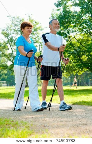 senior couple nordic walking in the park