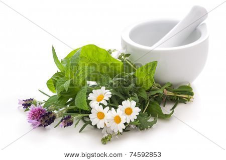 Healing herbs and a mortar. Alternative medicine concept